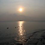 Abendbad der Enten auf Borkum